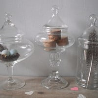 3 vintage Apothecary jars ... Wedding candy buffet jars ... candy jars ... Terrariums