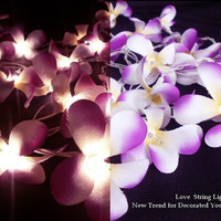 Violet Scene Frangipani Flower String Lights For Wedding and House decoration (20 Flowers/Set)