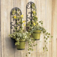Iron Hanging Wall Planter Holder