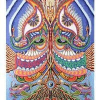 Amazon.com: Yes Yes Yes No No No Psychedelic Trippy Tapestry 60x90 - Artwork By Chris Dyer: Home & Kitchen