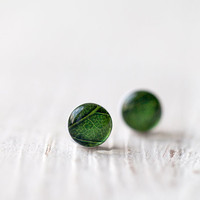 Green earrings - Leaf - Tiny ear posts  (E100)