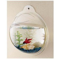 Amazon.com: Wall Mount Hanging Beta Fish Bubble Aquarium Bowl Tank: Pet Supplies