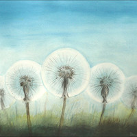 Fluffy Dandelion Plants - Fine Art Watercolor Painting, 13 inch x 9 inch