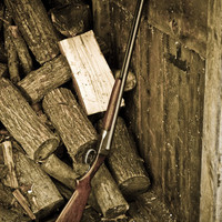 Shotgun in a Woodpile by FairchildPhotography on Etsy