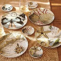 Coastal Curiosity Salad Plate Set of 4