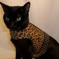 RockinDogs Handmade Couture Leopard and Faux Leather by Rockindogs