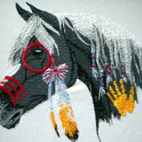 Native American embroidered war pony framed picture