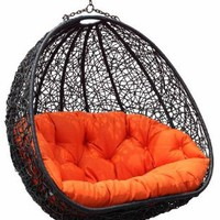 Estella - Dual Sitting Outdoor Wicker Swing Chair/ Porch Hanging Chair - DL024BK: Home & Kitchen
