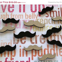 BOGO Blowout Sale Mini Moustache Fun - 20 Mini Stashes FREE SHIPPING