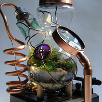 Professor Alexander's Botanical Vasculum Steamed by SteamedGlass