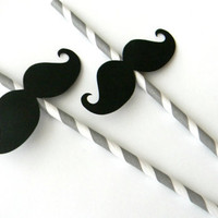 Mustache Party Straws by whimsicaloccasionsxo on Etsy