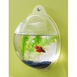 Wall Mount Fish Bowl Aquarium Tank