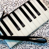 Piano Keys Wristlet TICKLIN' THE IVORIES by gmPurseanalities