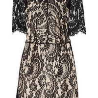 Lover | Christina lace mini dress | NET-A-PORTER.COM