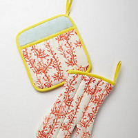 Kelp &amp; Coral Potholders
