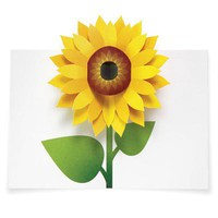 Pop-Up Sunflower Note Cards by MoMA - Pop! Gift Boutique