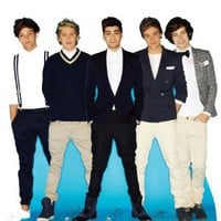 AG1D2 One Direction Cardboard Cutout Standee Standup