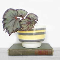 Mid Century Planter in Mustard and Gray by RhettDidntGiveADamn