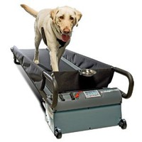 Amazon.com: PetZen DogTread Dog Treadmill, Up to 150-Pounds, Large: Pet Supplies