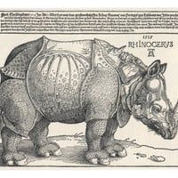 The Indian Rhinoceros is the Largest of the Asian Spiecies Giclee Print by Albrecht Drer