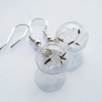 Real Dandelion Earrings Make A Wish 01 Dandelion Specimen Seeds  Botanical Glass Beads Orb Woodland Charm Nature