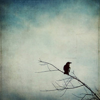 Nevermore.. Art Print by Brandy Coleman Ford | Society6