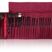 SHANY Cosmetics NY Collection Pro Brush Kit, 13 Ounce (22 Piece Mix Natural or Synthetic with Purple Faux Crocodile Case)