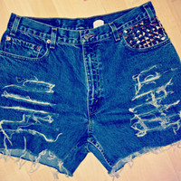 Plus Sized High Waisted Denim Shorts Levi Jean Shorts Studded Pocket Hipster Tumblr