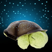 Twilight Turtle at Firebox.com