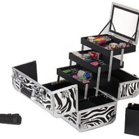 SHANY Cosmetics SHANY Premium Collection Makeup Train Case, Zebra Texture: Beauty