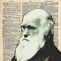 Antique Dictionary Page Portrait Charles Darwin by FoxHunterStudios
