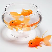 Light-Up Color-Changing Koi Fish Toy