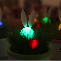 Rabbit Night Light Grass Pot - Toys