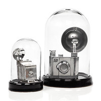 Glass Bell Jar - Black | Decorative-accessories | Accessories | Z Gallerie