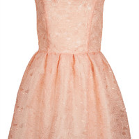 Delicate Organza Prom Dress - Prom - Collections - Topshop USA