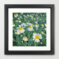 Spring daisies Framed Art Print by Guido Montas