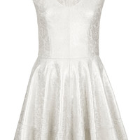 Foil Bonded Lace Skater Dress - Dresses - Clothing - Topshop USA