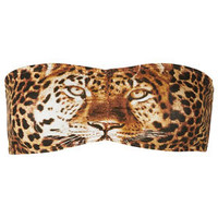Leopard Face Bandeau - New In This Week  - New In