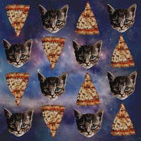 Kitten Pizza Galaxy  Art Print by Beth Zimmerman