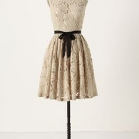 Spinning Lace Dress?-?Anthropologie.com