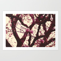 pink magnolias Art Print by Beverly LeFevre