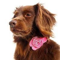 The Flower Child Pink Leather Dog Collar by LuxeMutt on Etsy