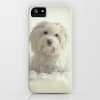*** FLUFFY DOG *** iPhone &amp; iPod Case by Mnika  Strigel for iphone + ipod touch + samsung galaxy