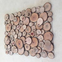 Sliced Wood Art - 'The Thicket' - Abstract Wood Art - Floating/Layered Tree Slices on Clear Panel - Nature Home Decor