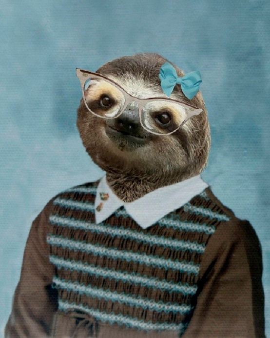 a sloth with glasses