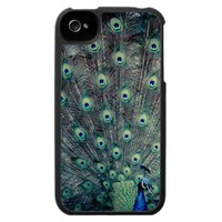 His Feathered Majesty iPhone 4 Cover from Zazzle.com