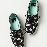 Feline Oxfords