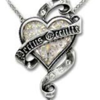 The Secret Heart - Alchemy Gothic Pendant Necklace