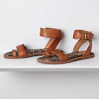 Sasha Toe Loop Sandals