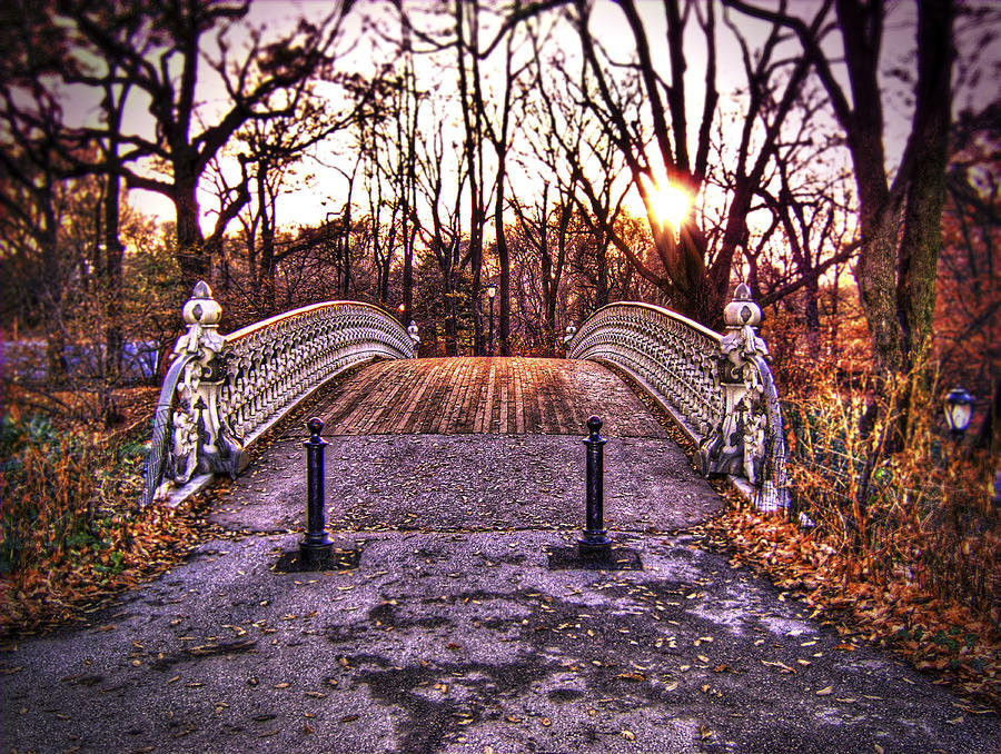 Central Park Bridge Photograph by Tammy Wetzel - Central Park Bridge Fine Art Prints and Posters for Sale